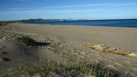 dunes de playa de pals