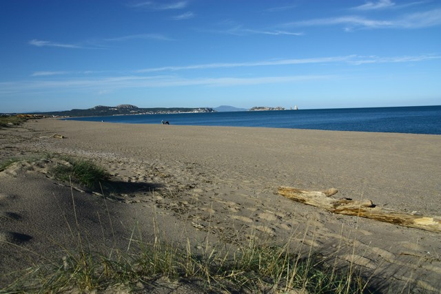 Les dunes de playa de Pals en espagne