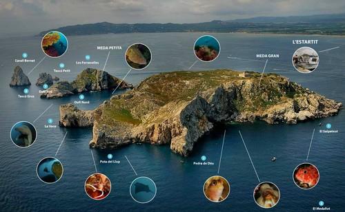 les sites de plongée des îles MEDES