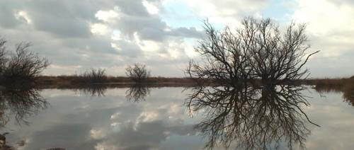 Entre le ciel et la terre - création du parc naturel des marais de l'Empordà.