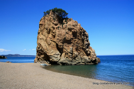 plages begur illa roja