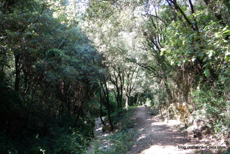 randonnée costa brava pineda pals begur (3)