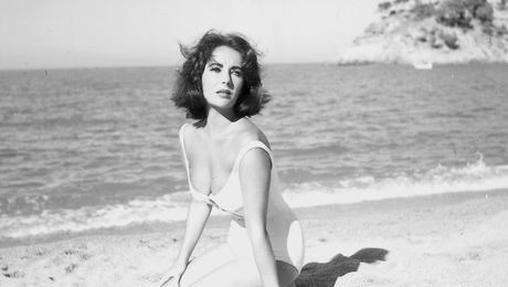 suddenly last summer eft