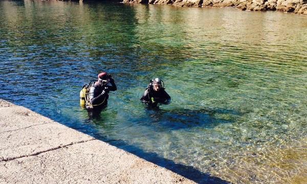 plongée costa brava aiguafreda octopus pals (1)