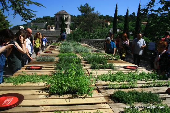 fête des fleurs de Gérone - Girona temps de flors (1)