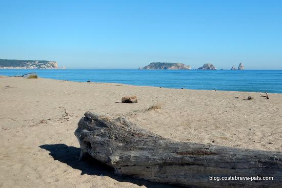 visiter les iles medes l'estartit costa brava (4)