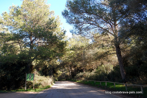 vélo nature Costa Brava (7)