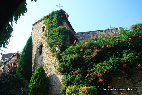 Peratallada en Catalogne - fleurs