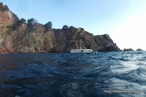 plongée entre Cap sa sal et Aiguafreda begur (8)