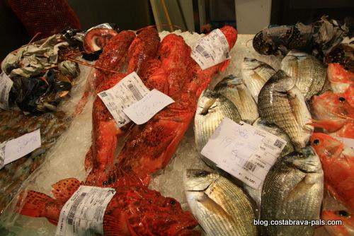 Les marchés de la Costa Brava - poissons