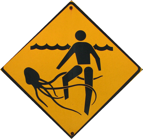 Baisse des piqures de méduses