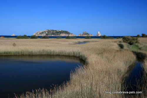 Les marais de l'Estartit - Ter vell et les îles Medes
