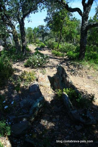 Les Gavarres dolmen de Puig del Clot del Llorer