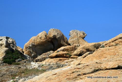 Tudela Cap de creus Catalogne - le chameau