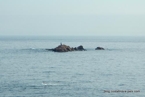 les iles Formigues Palamos - palafrugell