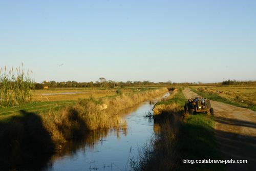 Balade dans les rizières de Pals