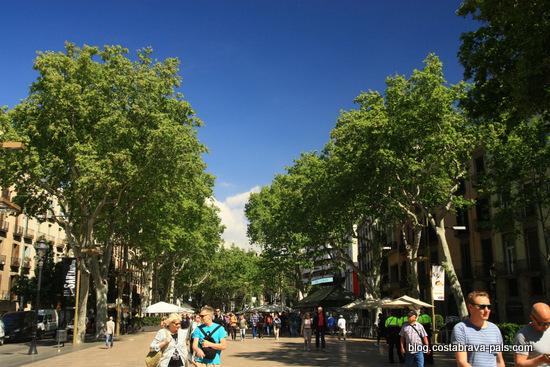 Les ramblas de Barcelone - Barcelone en 10 visites incontournables