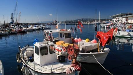 port de pêche de Palamos