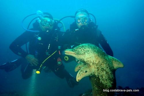 dauphin des iles Medes